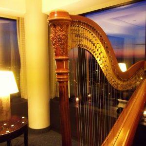 HODAYA VAHAV-Amway_Grand_Rapids_Harpist